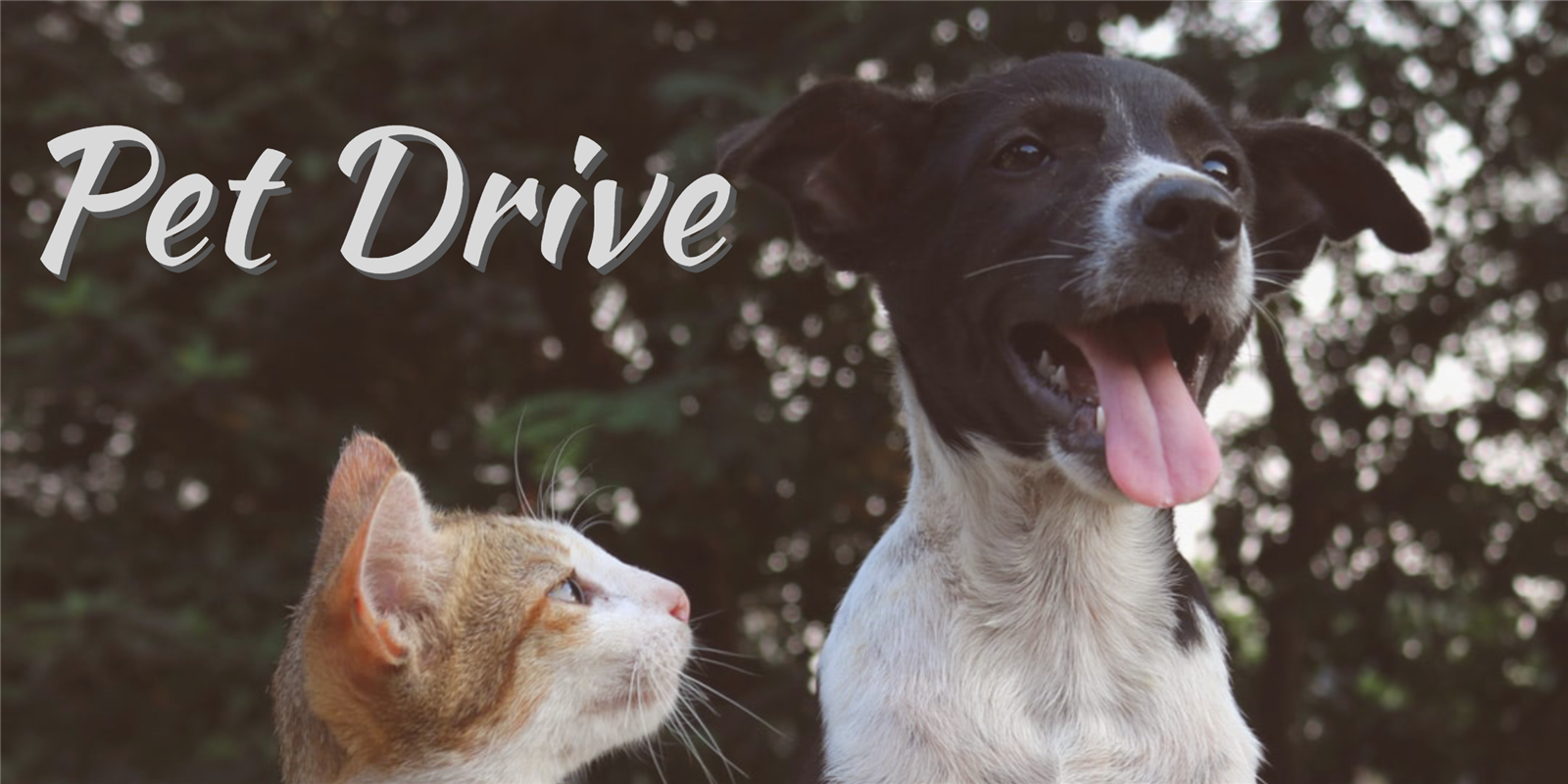 Consider Donating to EHUE Pet Drive