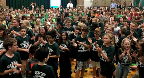 Green Ribbon Assembly