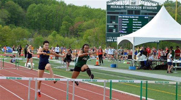 Track and Field Athletes Advance to State Playoffs